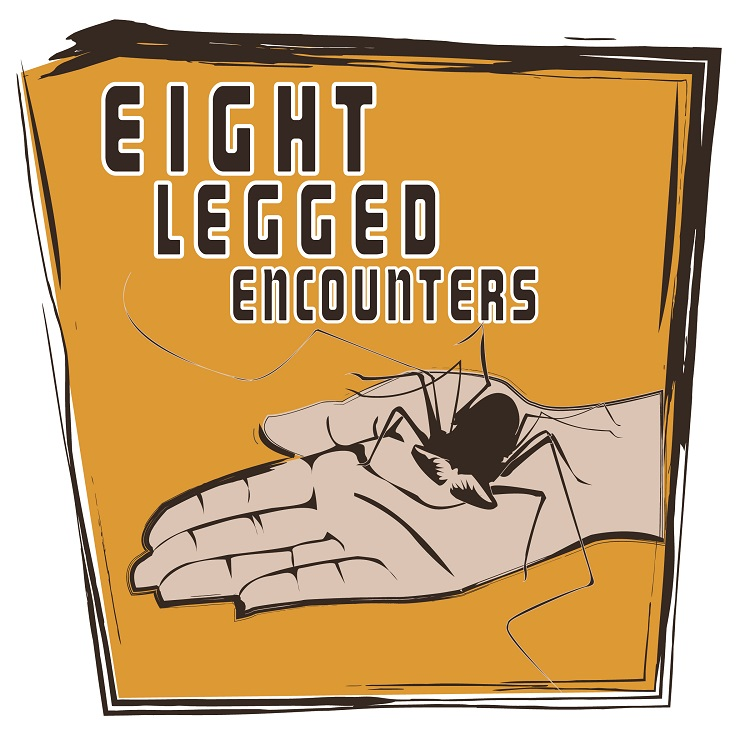 """""""Eight-Legged Encounters"""" will be 12:30-4:30 p.m. March 16 at Morrill Hall, one block south of 14th and Vine streets on the University of Nebraska-Lincoln City Campus."""