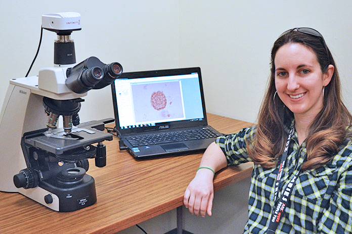 Johnica Morrow has co-authored a monograph that describes all of the coccidian species known to infect turtles worldwide. (Mekita Rivas | Natural Resources)