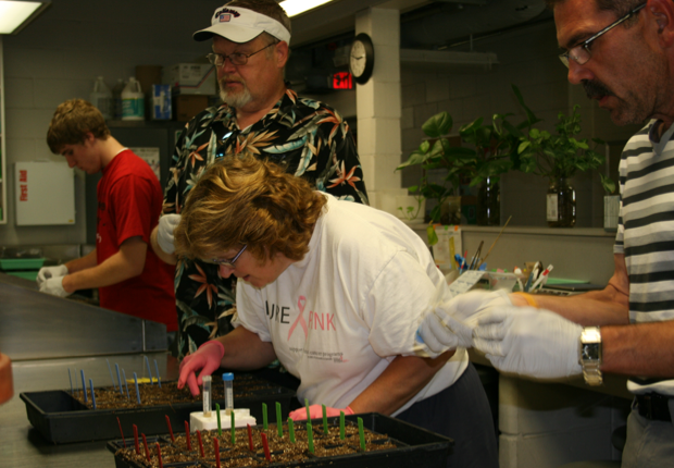Maxey Elementary School teachers work with soybean plants in a UNL lab.