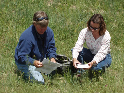 Julie Elliott, Natural Resources Conservation Service range management specialist, identifies a low-growing flowering plant for a visitor at a field day.