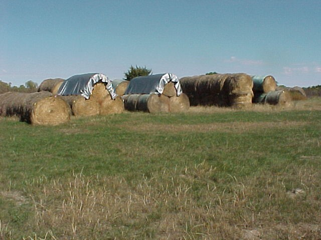 """There's no one """"right way"""" for everyone when it comes to hay storage.  Photo courtesy of Steve Niemeyer."""