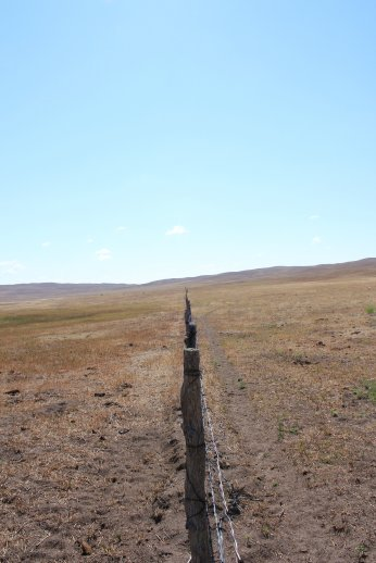 According to current fence laws in Nebraska landowners are required to equally split the cost of establishing and maintaining a fence to divide their properties if either of the parties would like to establish the boundary.  Photo courtesy of Troy Walz.