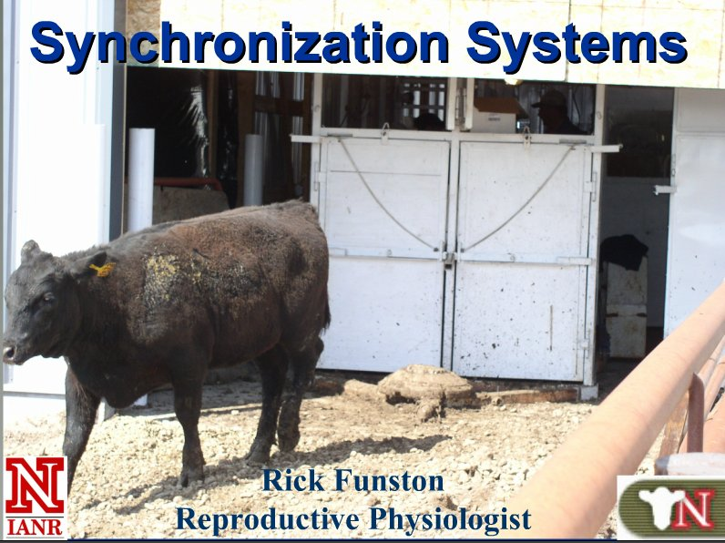 Estrus Synchronization in Heifers and Cows Webinar.