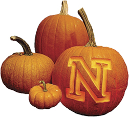 pumpkinN.jpg