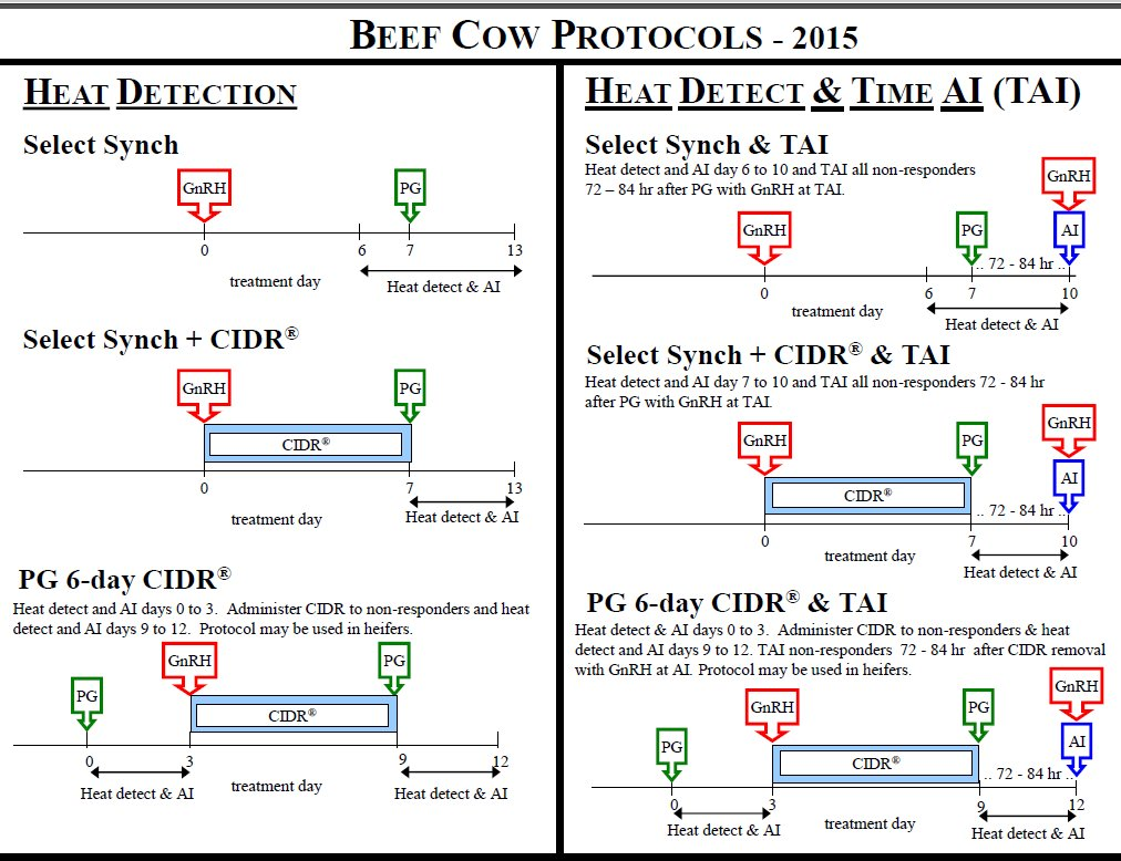 Suggested estrus synchronization protocols are updated annually and available at http://beefrepro.unl.edu