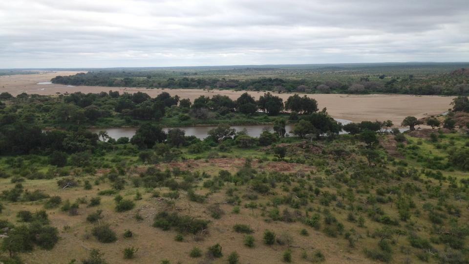 A research project that includes UNL's Trenton Franz is helping protect the endangered riparian vegetation at Mapungubwe National Park in South Africa.