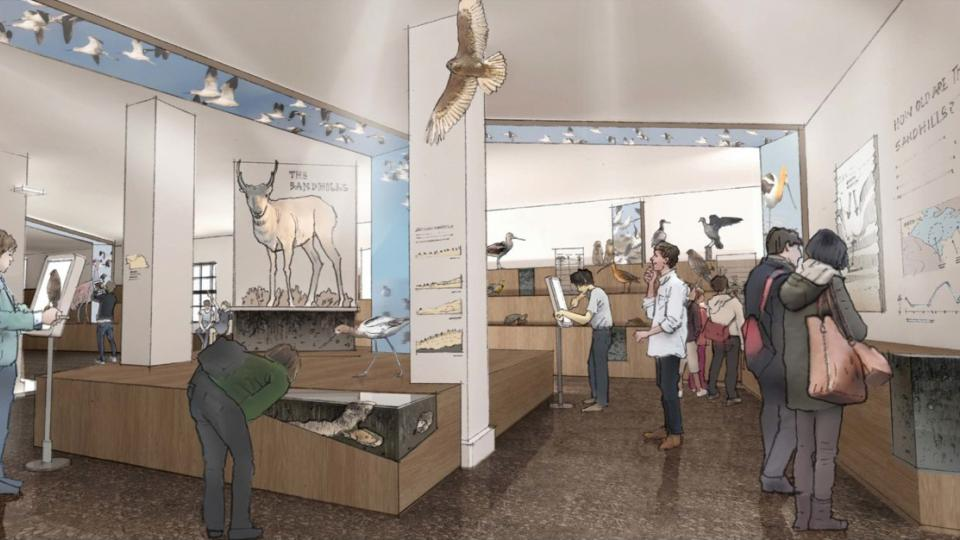 Visitors to the University of Nebraska State Museum will soon be able to experience Nebraska and natural history in entirely new ways because of major enhancements in store for the iconic museum at the University of Nebraska-Lincoln.