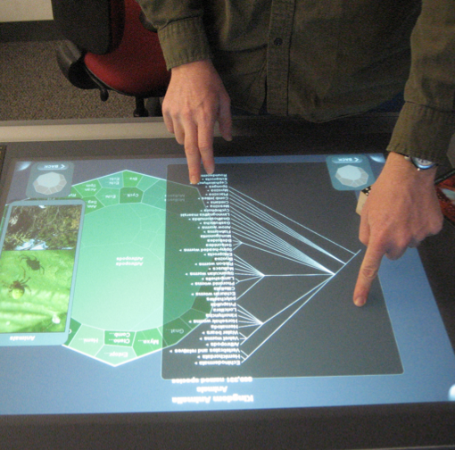 "The ""Life on Earth"" project will develop a multi-touch table top evolution exhibit like the one shown here."