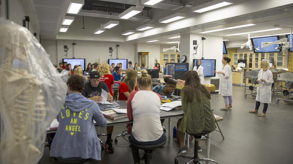 The redesigned anatomy lab in Manter Hall includes room for 60 students. The space includes six cadaver tanks, a specialized high-definition camera system, group work stations and an air exchange system that replaces the air in the lab 22 times each hour.