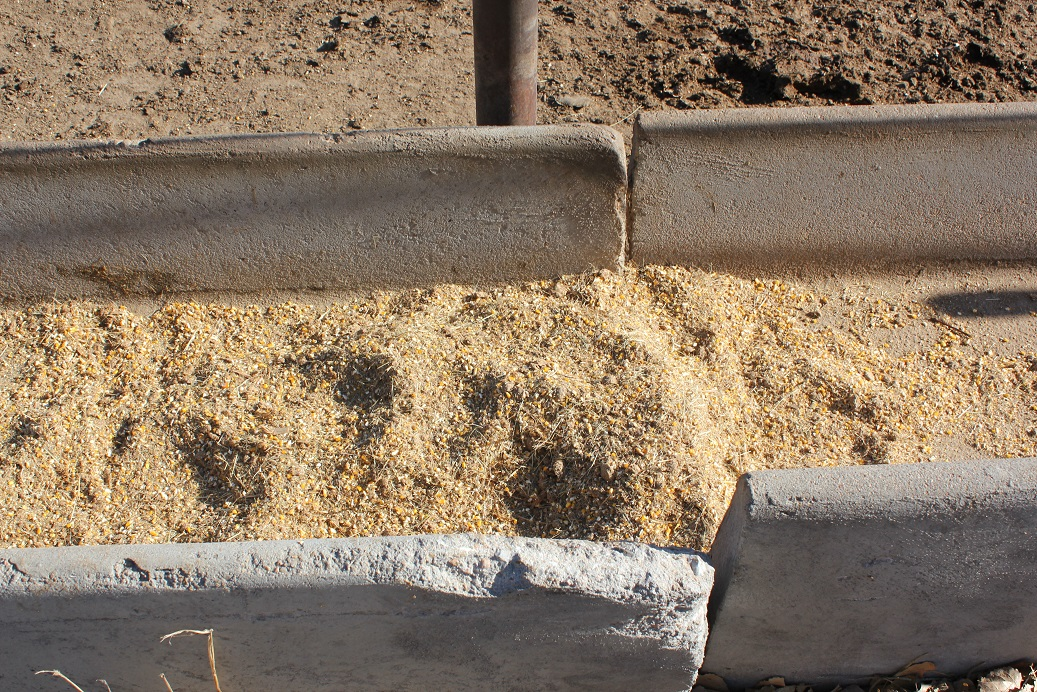 The Veterinary Feed Directive was developed out of the concern for antibiotic resistance associated with daily antibiotic use in animal feeds.  Photo courtesy of Troy Walz.