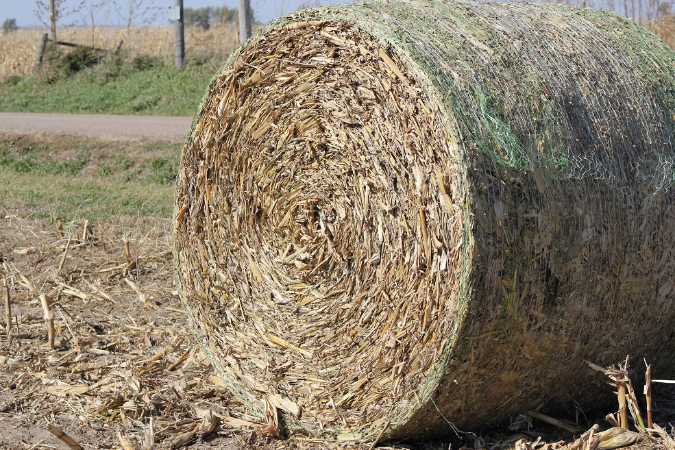 Sample and test your bales as soon as possible.  Photo courtesy of Troy Walz.