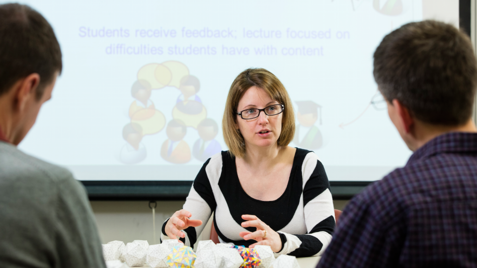 Marilyne Stains, UNL assistant professor of chemistry, is studying how science, technology, engineering and mathematics are taught at the university level and how to improve programs that train faculty to better teach science.