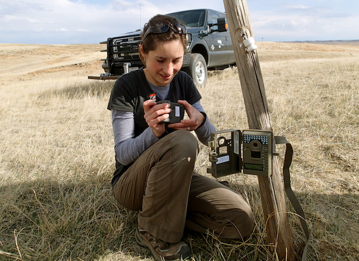 Lucia Corral, applied ecology doctoral student, was awarded the Arthur William Sampson Fellowship in Pasture Management from UNL's Center for Grassland Studies.