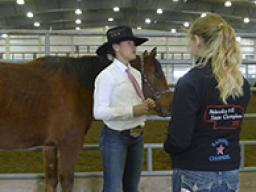 The levels of advancement in the 4-H Horse Project are designed to serve as guides for instruction and evaluation each members progress. The correct handling of horses is emphasized from the beginning level to the most advanced level.