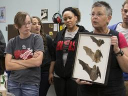 SNR's Trish Freeman (second from right) discusses Nebraska bats during a natural resources orientation class in 2014. (University Communications)