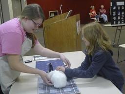 4-H Rabbit Clinic sessions includes showmanship.