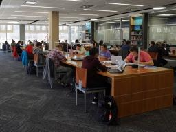Students studying in the Adele Hall Learning Commons