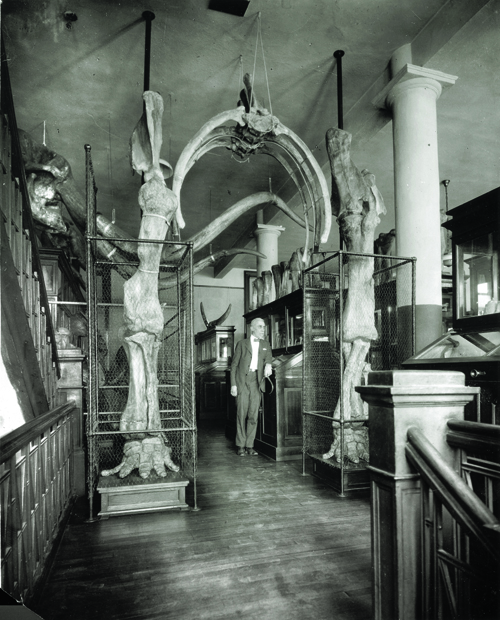 Erwin H. Barbour, State Museum Director from 1891-1941, stands next to Archie in the old museum building (1927).