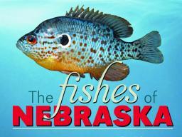 The Fishes of Nebraska