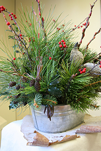 Learning to decorate naturally is just one event scheduled this week that offers reprieve from end-of-semester stress. | Courtesy Nebraska State Arboretum