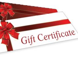 Consider an OLLI gift certificate this holiday season.