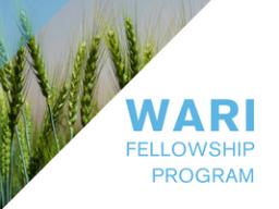 WARI Fellowship Program