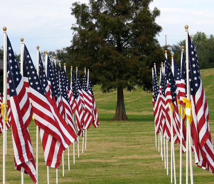 36511255.VeteransDay_Tofallenheroes.jpg