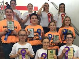 Several Lancaster County 4-H youth participated in the Dog Quiz Bowl and Dog Skill-a-thon at the 2016 Companion Animal Challenge.