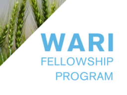 Water Advanced Research and Innovation Fellowship Program