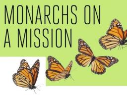 Monarchs on a Mission