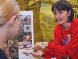 Nebraska's Eileen Hebets discusses her arachnid research with a teenager during a Sunday with a Scientist program at Morrill Hall (Troy Fedderson | University Communications)