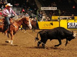 Attend the 59th Annual Rodeo on April 14-15