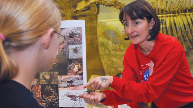 Nebraska's Eileen Hebets discusses her arachnid research with a teenager during a Sunday with a Scientist program at Morrill Hall. | Troy Fedderson, University Communication