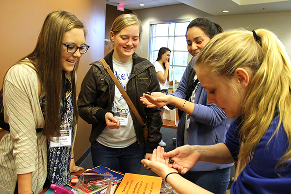 2017 Women in Science students explore the entomology workshop.