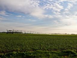 Nebraska researchers are involved in a USDA/ARS project to develop a model for engaging communities and stakeholders to ensure adequate supplies of good-quality water both for and from agriculture. | Courtesy IANR News