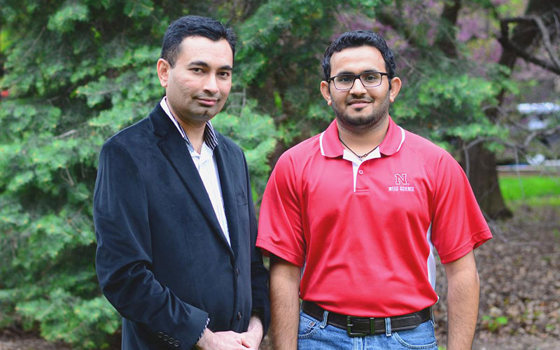 Amit Jhala (left) and Debalin Sarangi (right) along with other scientists detected pollen-mediated gene flow from glyphosate-resistant common waterhemp in Nebraska.