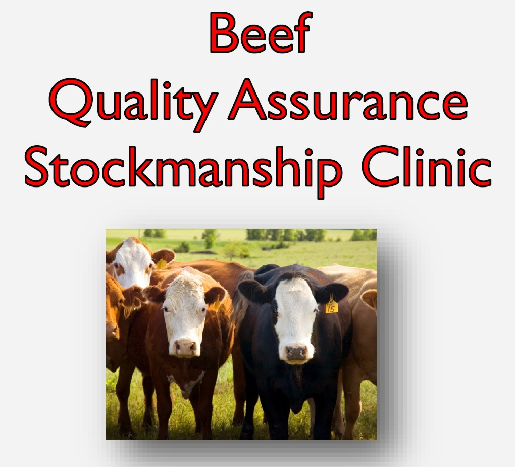 A Beef Quality Assurance Stockmanship Clinic will be held August 22 in North Platte at the Lincoln County Fairgrounds.