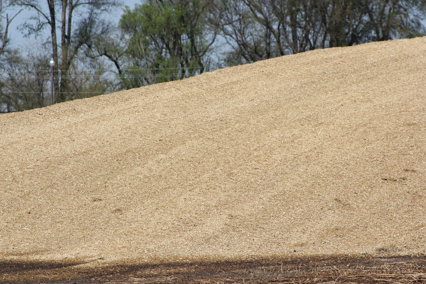 If silage is not correctly packed into a bunker (or bagged or put in silos), oxygen will remain in the pile which leads to greater shrink losses. Photo courtesy of Troy Walz.