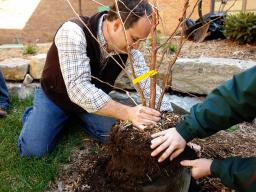 """Hands-on tree planting training will be offered as part of """"Re-Tree the Family Fun Zone"""" Oct. 21 in Grand Island. (Justin Evertson)"""
