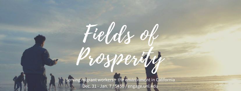 Fields of Prosperity