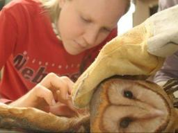 Zookeeping and Management, a new course offered in Spring 2018, will prepare students for careers as zookeepers.   Courtesy image