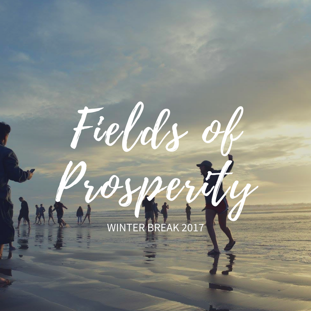 Fields of Prosperity