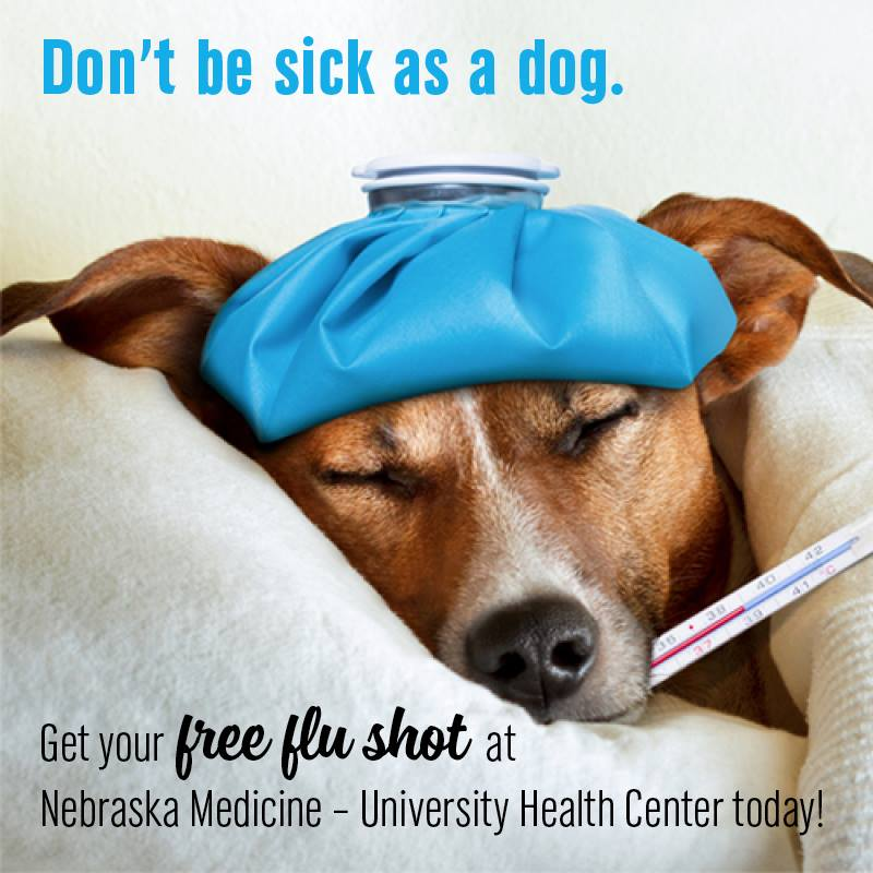 Get a flu shot to avoid getting sick.