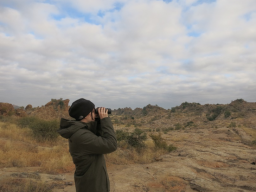 Emily Hruza, one of SNR's Cabela's apprentices, studied Chacma baboons and their interaction with African elephants at watering holes for her research project. | Courtesy image