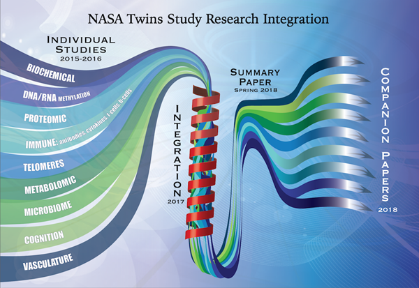 This graphic illustrates how the individual Twins Study projects will be integrated into one summary paper slated for release later this year. The summary paper will then be followed by the release of several companion papers delving into the specifics of