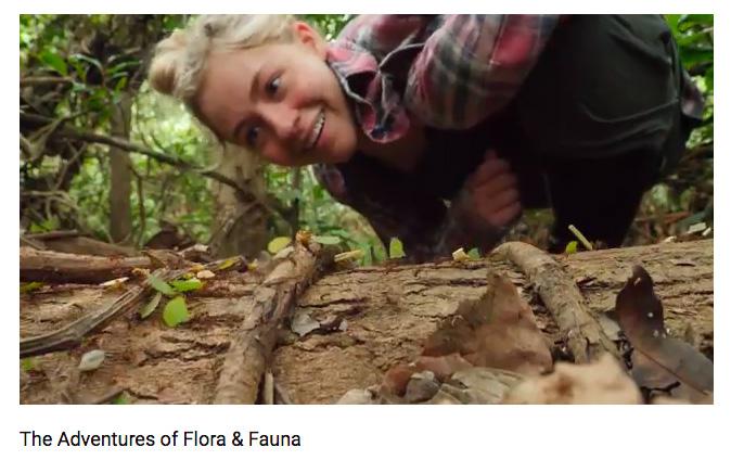 A screen grab of Grace Bullington's co-created mockumentary.