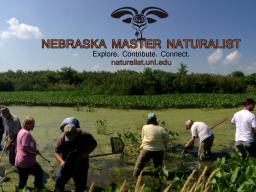 Master Naturalist program