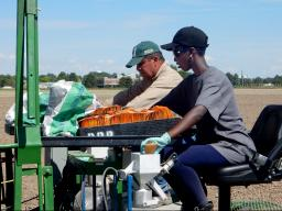 Carlos Urrea, a dry edible bean breeding specialist (left), and intern Peace Munyana plant experiments at the Panhandle Research and Extension Center in Scottsbluff, Nebraska.