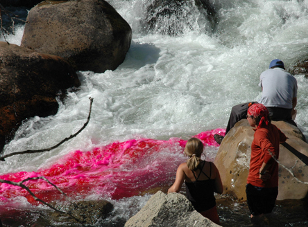 Students conduct a dye tracer test in the Popo Agie River near Lander, Wyo., to determine stream discharge and travel time. Courtesy School of Natural Resources.
